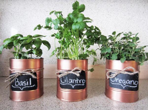 ervas aromaticas na cozinha