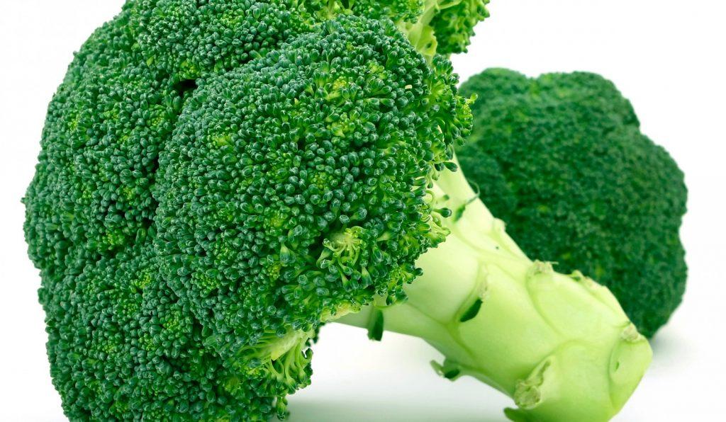 Como Plantar Bócolos / Brócolis