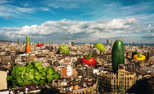 huerto-urbano-barcelona-jardinitis-sant-pau-del-camp